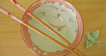 Cat bowl and chopsticks