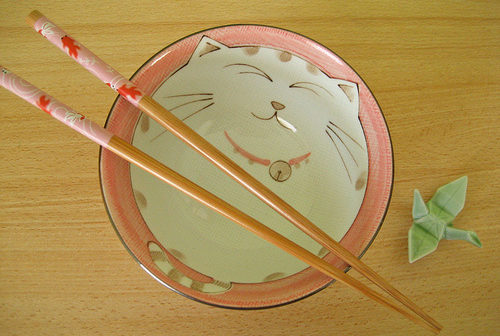 Cat bowl and chopsticks