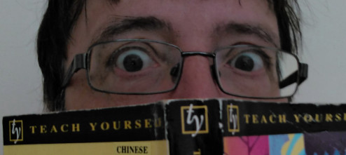 Chinese_for_the_terrified_image