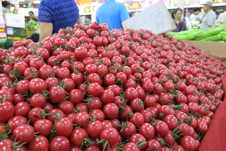 beijing tomatoes_resize