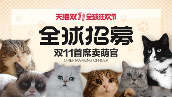 Chief Maimeng Officer