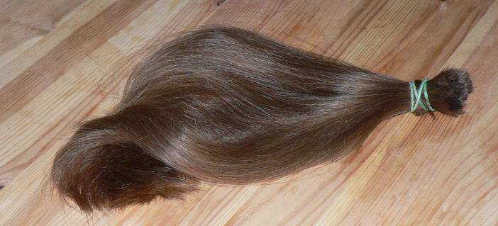 Cut-off_ponytail