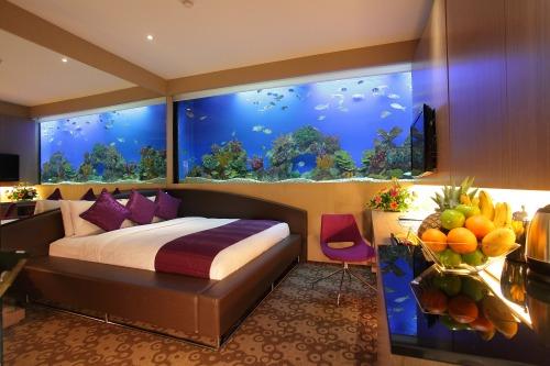 Aqua_Room_1