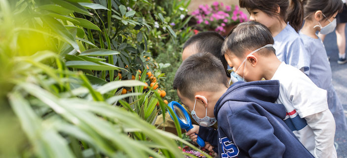 Where The Class is Greener: Nature-based, Outdoor Learning takes Root at YCIS Beijing